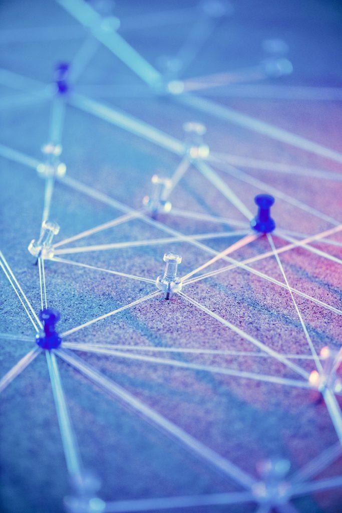 sieć internetowa